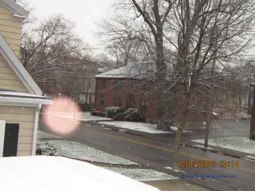 Snow_2012_H