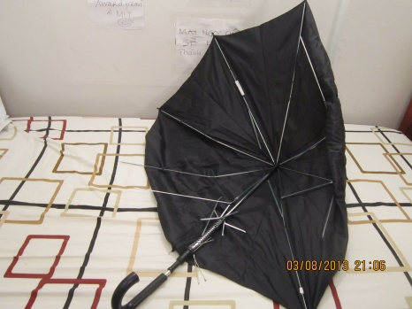 I feel sorry for not bring the intact umbrella home. This umbrella is much stronger than mine.